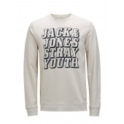 Толстовка JORCHANGED SWEAT CREW NECK 12116828RainyDay Jack & Jones