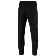 Штаны EVOSTRIPE MOVE PANTS 59492401 Puma