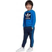 Костюм CREW SET ED7727 Adidas