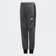 Штаны YB P PANT WARM ED5708 Adidas